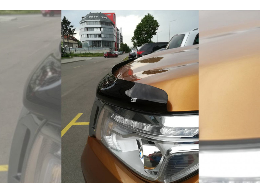 Bug Deflector for Nissan Navara D23 after 2016 5