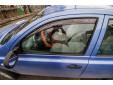 Farad Front Wind Deflectors for Nissan Micra 5 doors 2003-2010 3